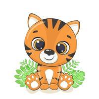 söt baby tiger