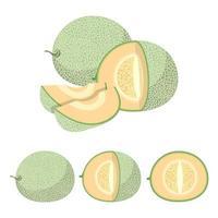 Melone auf weiß vektor