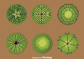 Träd toppar samlingsvektor vektor