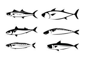 Makrelen Vektoren