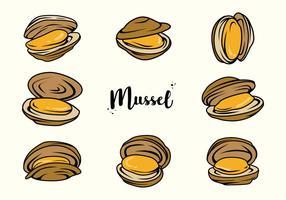 Freier Mussel Vektor