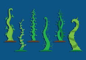 Beanstalkvektor vektor