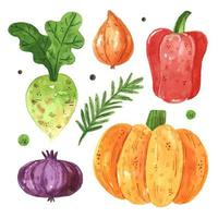Gemüse-Set würzen