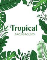 grüne tropische Blätter Dekoration vektor