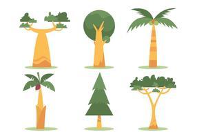 Baobab Vektor Set