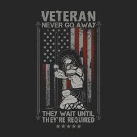 amerikansk veteranflagga vektor