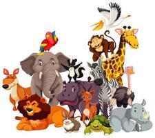 grupp av vilda djur seriefigurer vektor