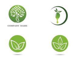 gröna blad ekologi ikoner set vektor