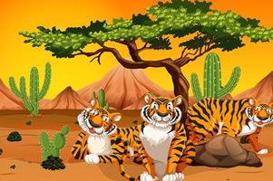 tigrar i en öken scen vektor