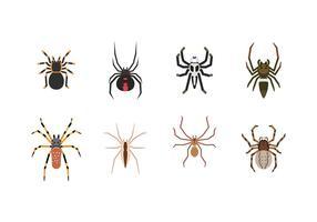 Kostenloser Spinnenvektor