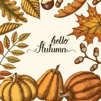 Herbsthintergrund mit handgezeichneten Blättern und Kürbissen vektor