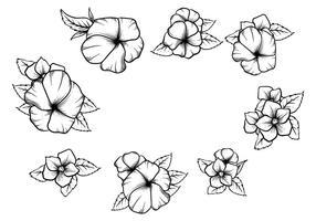 Free Hand Drawn Pansy Vektor