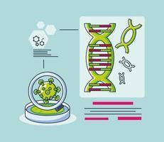 Infografik mit einem DNA-Molekül und Coronavirus-Forschung vektor