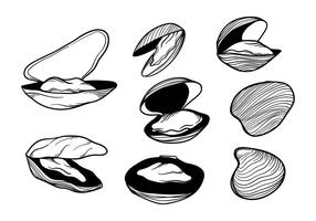 Free Hand Drawn Mussel Vektor