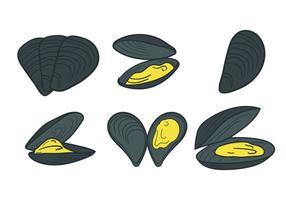 Musselvektor vektor