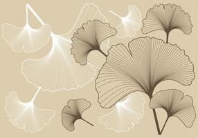Ginko Muster Hintergrund vektor