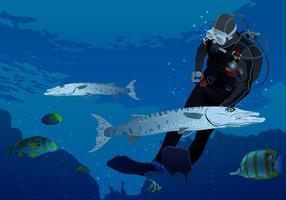 Schwimmen mit Barracuda Vektor