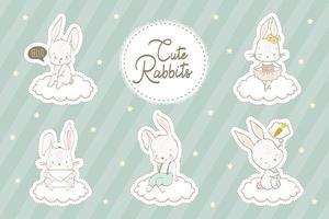 Baby Kaninchen gesetzt