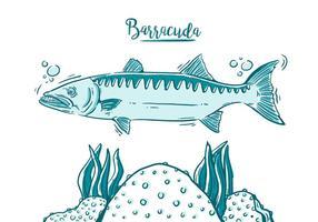 Gratis Barracuda Fisch vektor