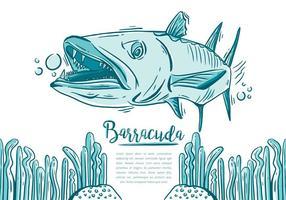 Gratis Barracuda Fish vektor