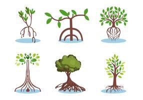 Mangrove-Vektor-Set