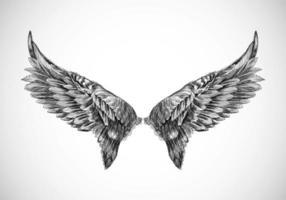 Hand gezeichnete Vogelflügel Skizze Design vektor