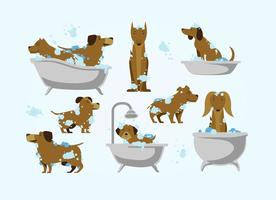 Free Dog Wash Vektor