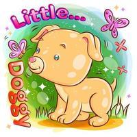 süßer Hund, der mit Schmetterling im Garten spielt