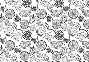 Gratis fruktmönster 2 vektorer