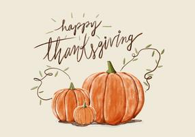 Thanksgiving Pumpkin Akvarell Vector