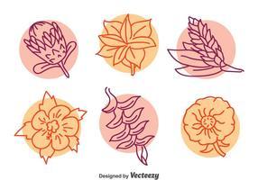 Exotische Blume LIne Vektor Set