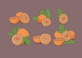 Passion frukt vektor
