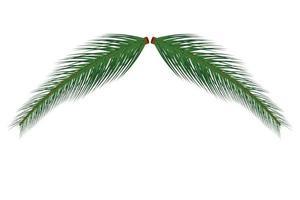 gren av julgran vektor