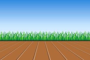 Hintergrund des grünen Grases und des blauen Himmels vektor