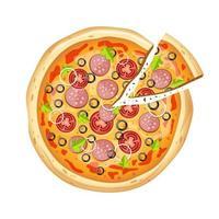 färsk läcker pizza vektor