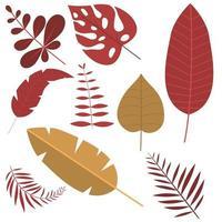 tropiska blad isolerade vektor
