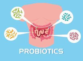 Körperteil mit Probiotika Organismen