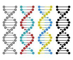 menschliches DNA-Design vektor