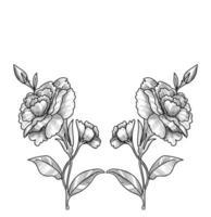 schöne Blumenskizze