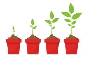växtodlingsstadier vektor