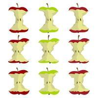 äpplekärna isolerad på vit vektor