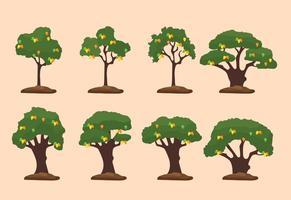 Mango träd illustration vektor