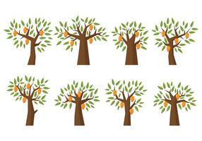Mangoträd vektor