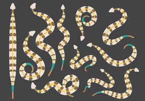 Free Rattlesnake Icons Vektor