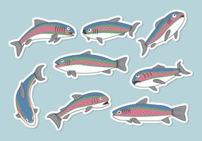 Gratis Rainbow Trout Vector