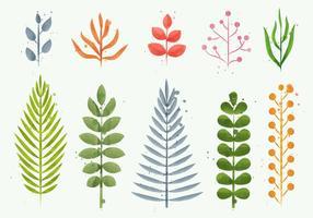 Blommor vattenfärg växt vektorer