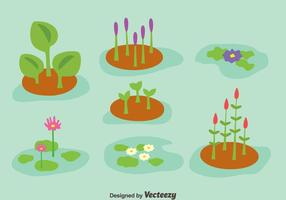 Sumpf Pflanze Sammlung Vektor