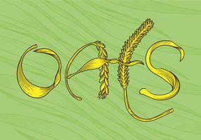 Free Oats Vector Illustration