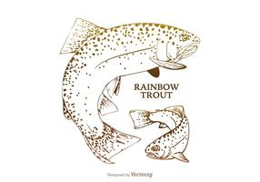 Gratis Rainbow Trout Vector Illustration