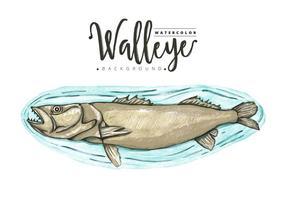 Gratis Walleye Bakgrund vektor